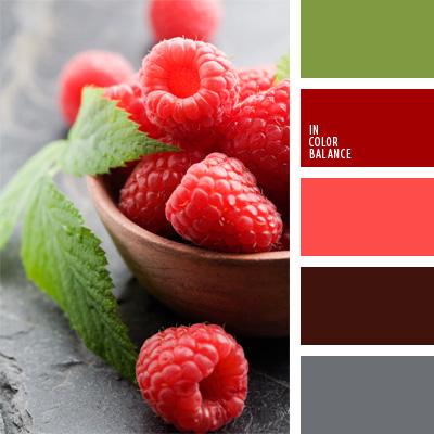 paleta-de-colores-99