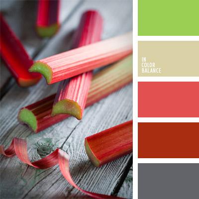 paleta-de-colores-310