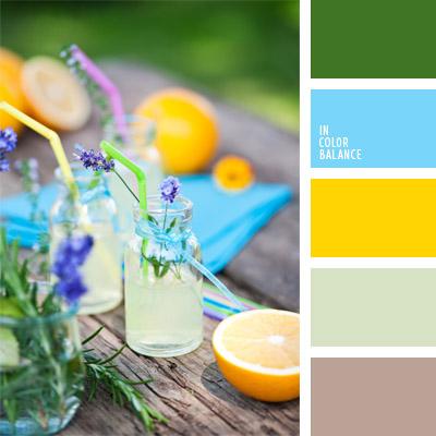 paleta-de-colores-315