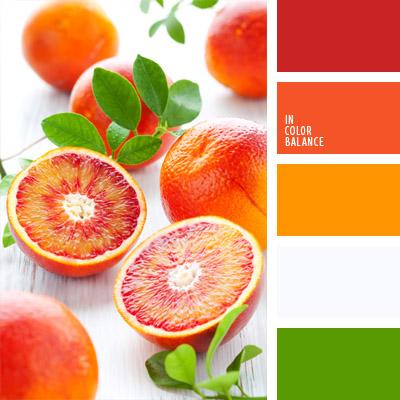 paleta-de-colores-322