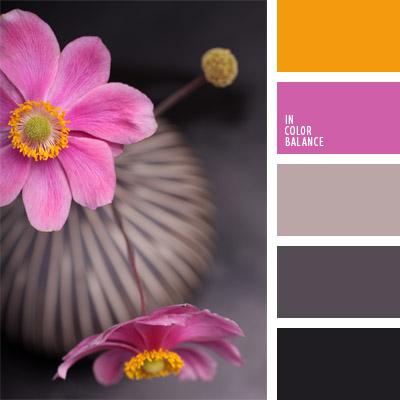 paleta-de-colores-328