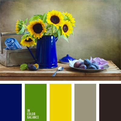 paleta-de-colores-355