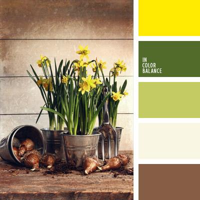 paleta-de-colores-364