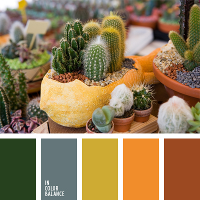 paleta-de-colores-372