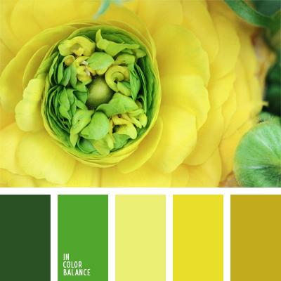 paleta-de-colores-375