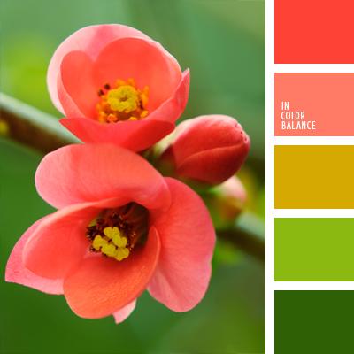 paleta-de-colores-382