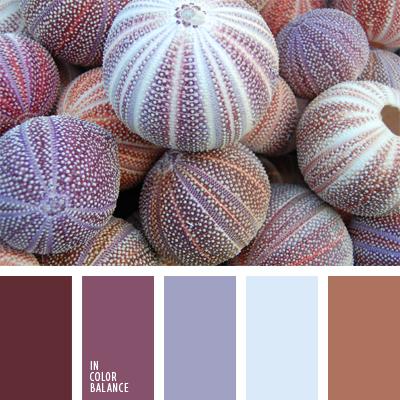 paleta-de-colores-383