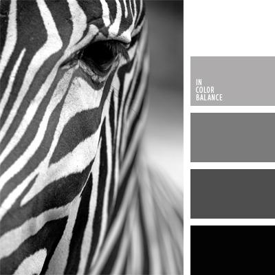 paleta-de-colores-387