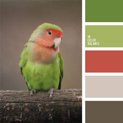 paleta-de-colores-398