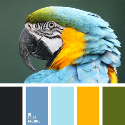 paleta-de-colores-402