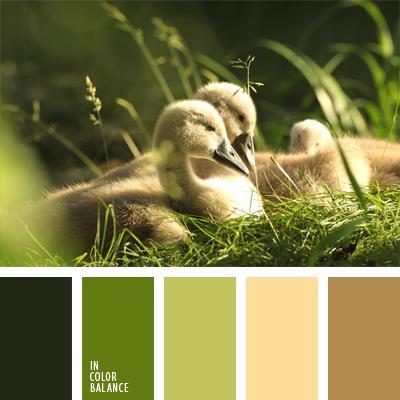 paleta-de-colores-409