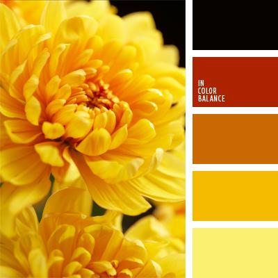 paleta-de-colores-413