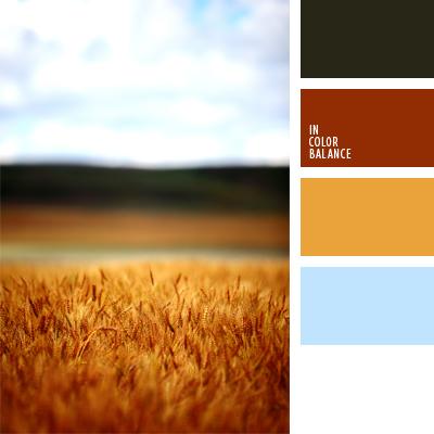 paleta-de-colores-414