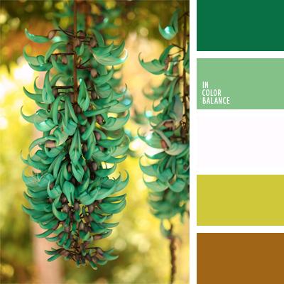 paleta-de-colores-423