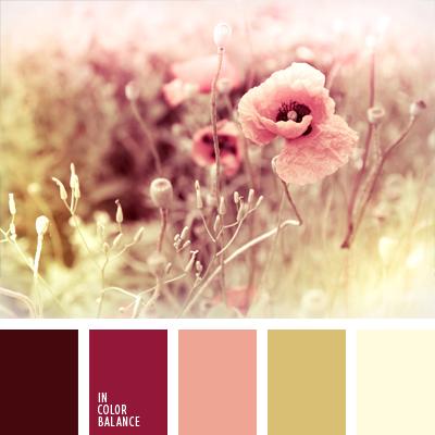 paleta-de-colores-426