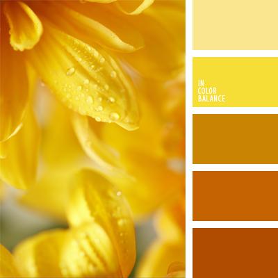 paleta-de-colores-431