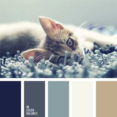 paleta-de-colores-434