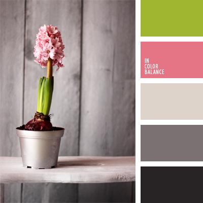 paleta-de-colores-437