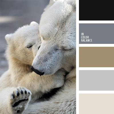 paleta-de-colores-442