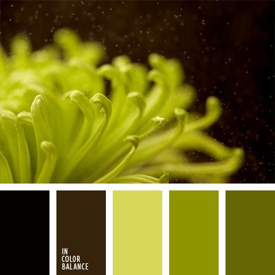 paleta-de-colores-443