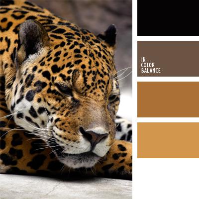 paleta-de-colores-445