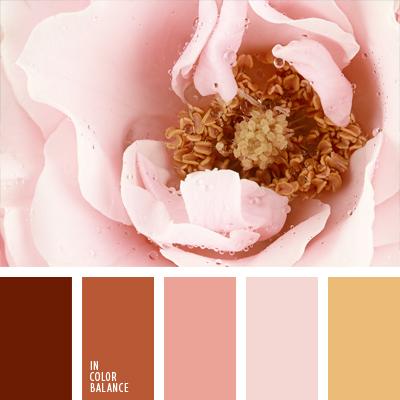paleta-de-colores-459