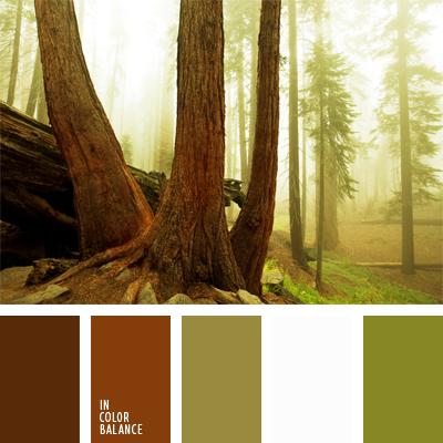 paleta-de-colores-460