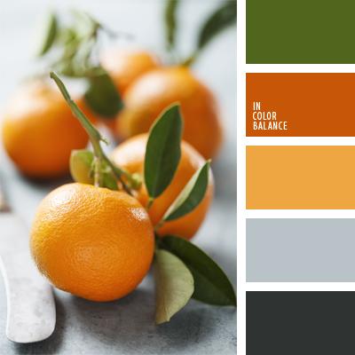 paleta-de-colores-461