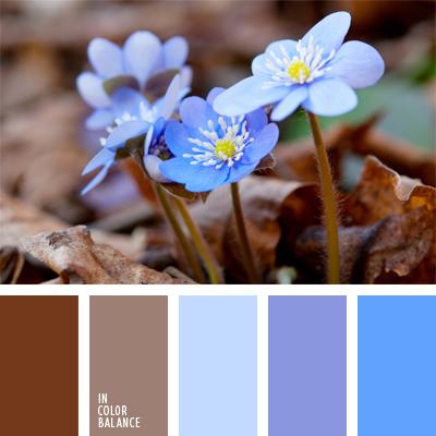 paleta-de-colores-463