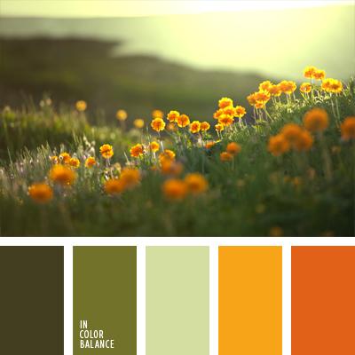 paleta-de-colores-470