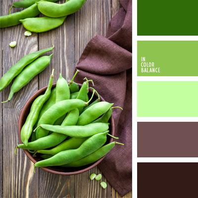 paleta-de-colores-472