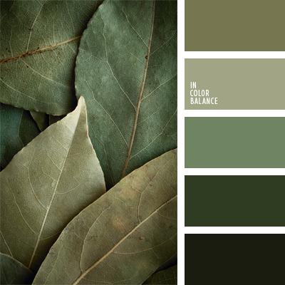 paleta-de-colores-475