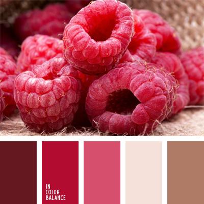 paleta-de-colores-476