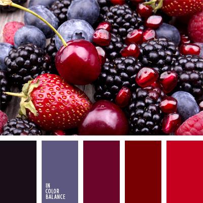 paleta-de-colores-477