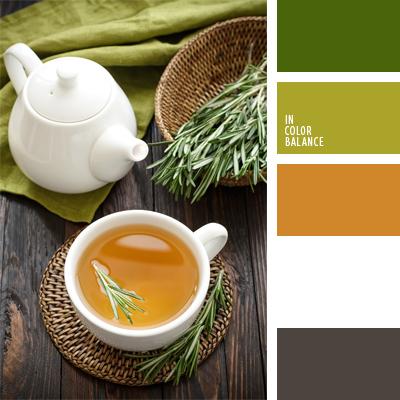 paleta-de-colores-478
