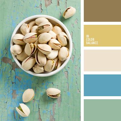 paleta-de-colores-479