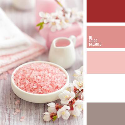 paleta-de-colores-482