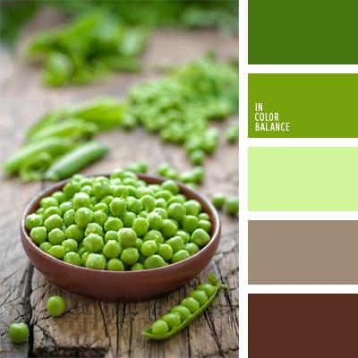 paleta-de-colores-483