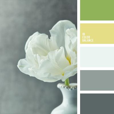 paleta-de-colores-484