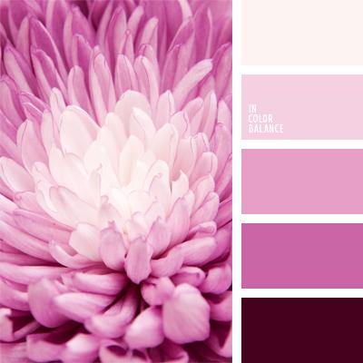 paleta-de-colores-488