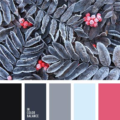 paleta-de-colores-489