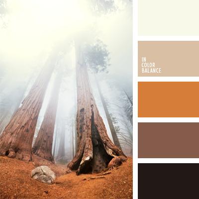 paleta-de-colores-499