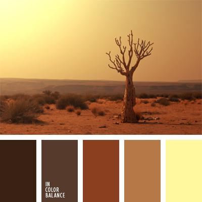 paleta-de-colores-505