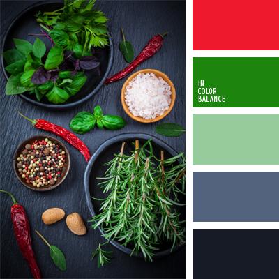 paleta-de-colores-508
