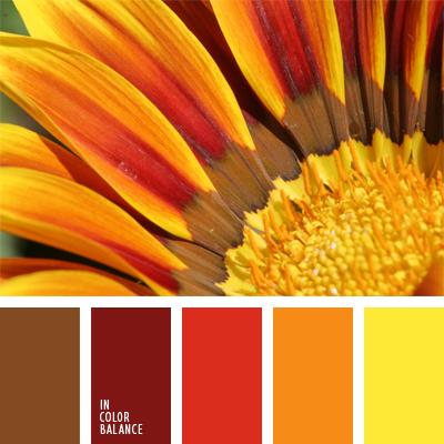 paleta-de-colores-514