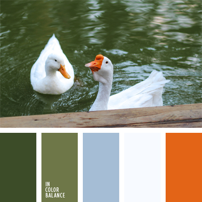 paleta-de-colores-525