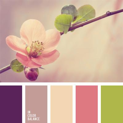 paleta-de-colores-528