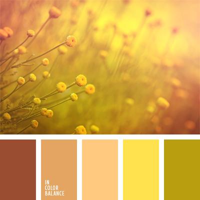 paleta-de-colores-531