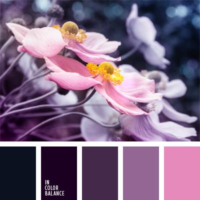 paleta-de-colores-537