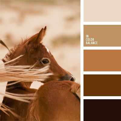 paleta-de-colores-538